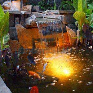 Đèn dưới nước hồ cá 3W 2