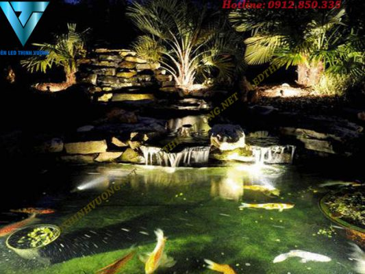 Địa chỉ bán đèn hồ cá giá rẻ tại Hà Nội